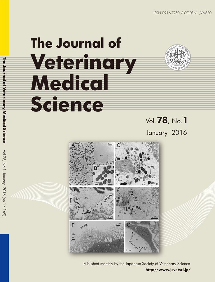 Current Issue of JVMS, avivable on J-STAGE