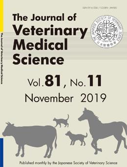 vol-81-no-11-november-2019