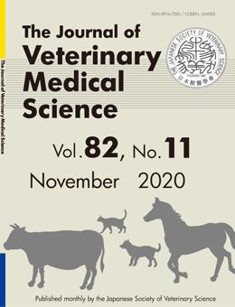 vol-82-no-11-november-2020